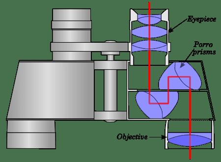 binocular-diagram