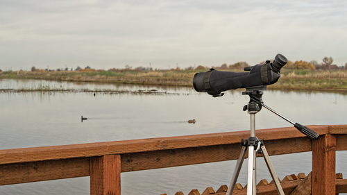 Birdwatching spotting scope at marsh